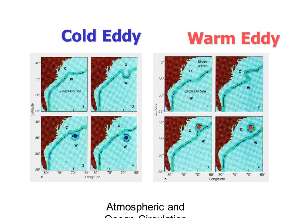 Atmospheric and Ocean Circulation Cold Eddy Warm Eddy