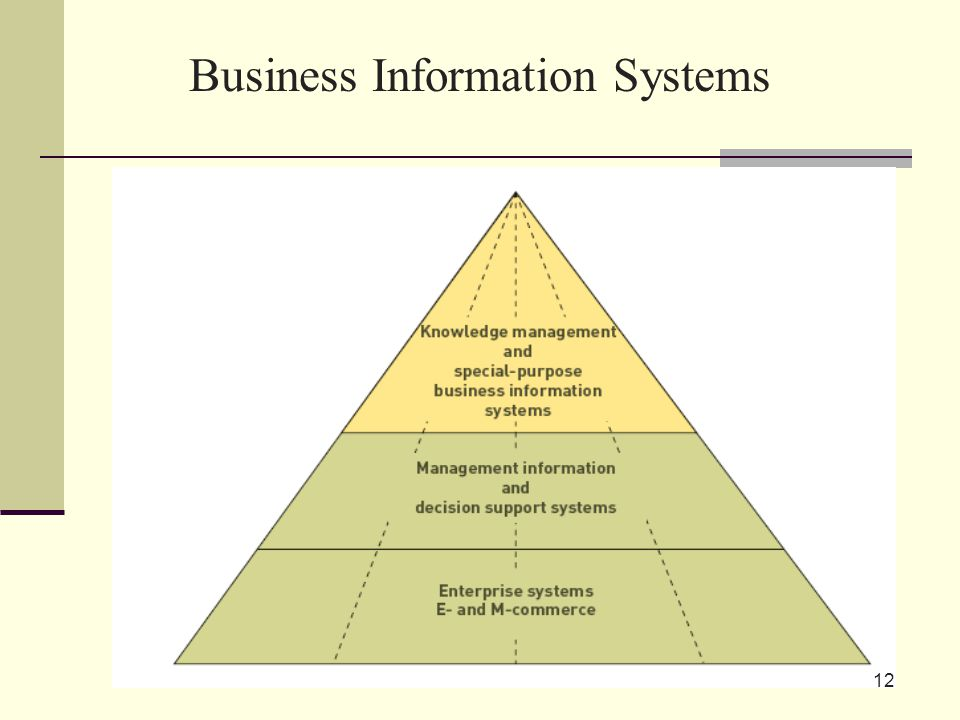 12 Business Information Systems