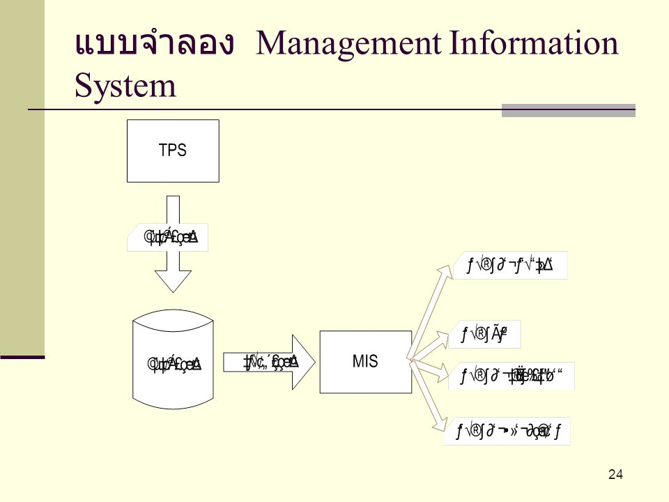 แบบจำลอง Management Information System 24