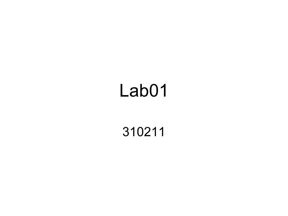 Lab01 310211