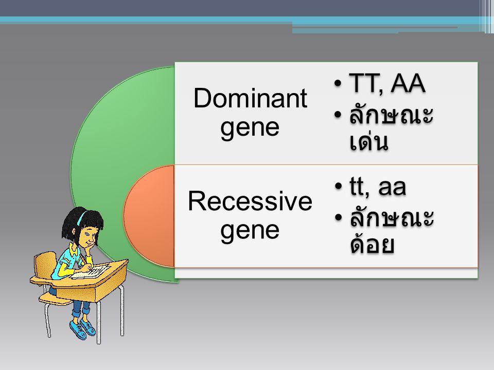 Dominant gene Recessive gene TT, AA ลักษณะ เด่น tt, aa ลักษณะ ด้อย