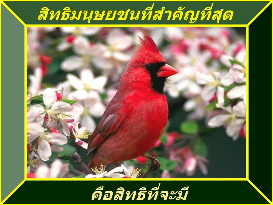 ถ้ามีสันติภายในตัวท่าน ก็จะมีที่ว่างสำหรับรับความ คิดเห็นของคนอื่นด้วย
