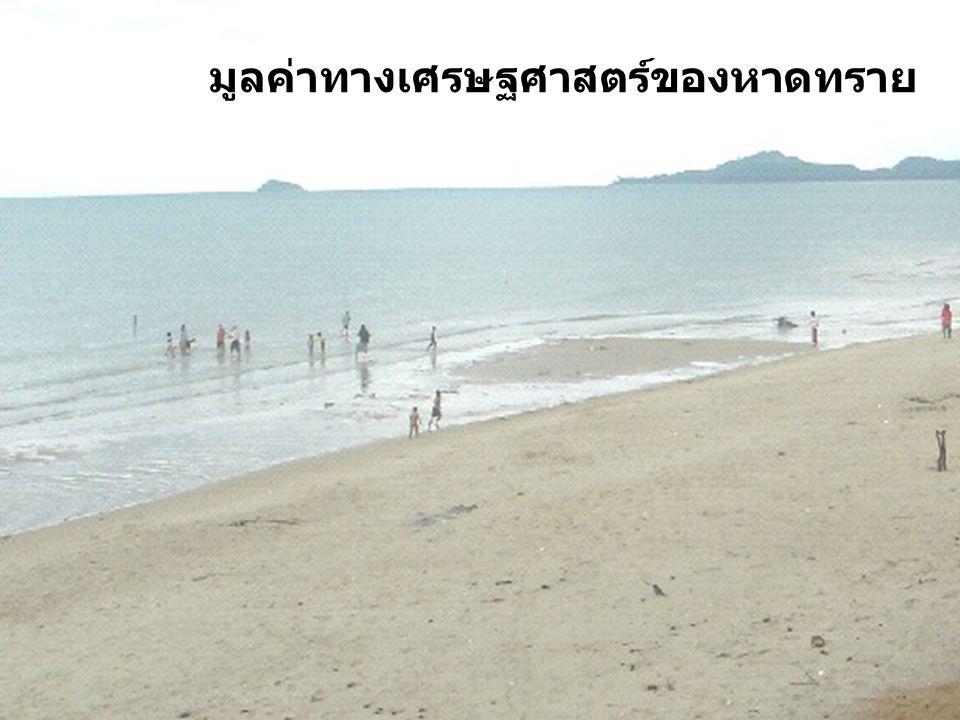 มูลค่าทางเศรษฐศาสตร์ของหาดทราย