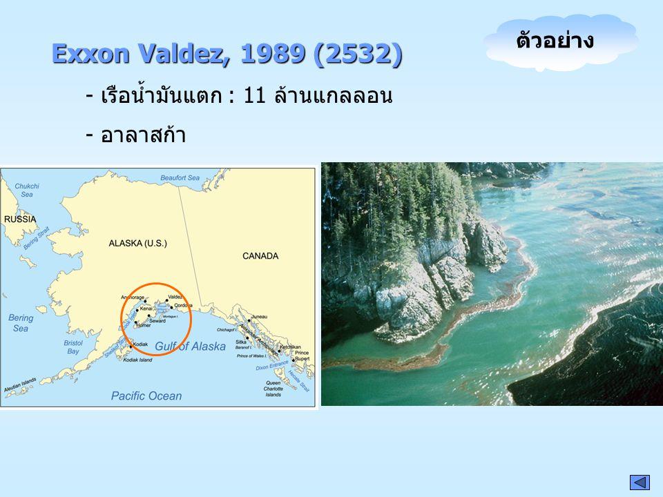 Exxon Valdez, 1989 (2532) - เรือน้ำมันแตก : 11 ล้านแกลลอน - อาลาสก้า ตัวอย่าง