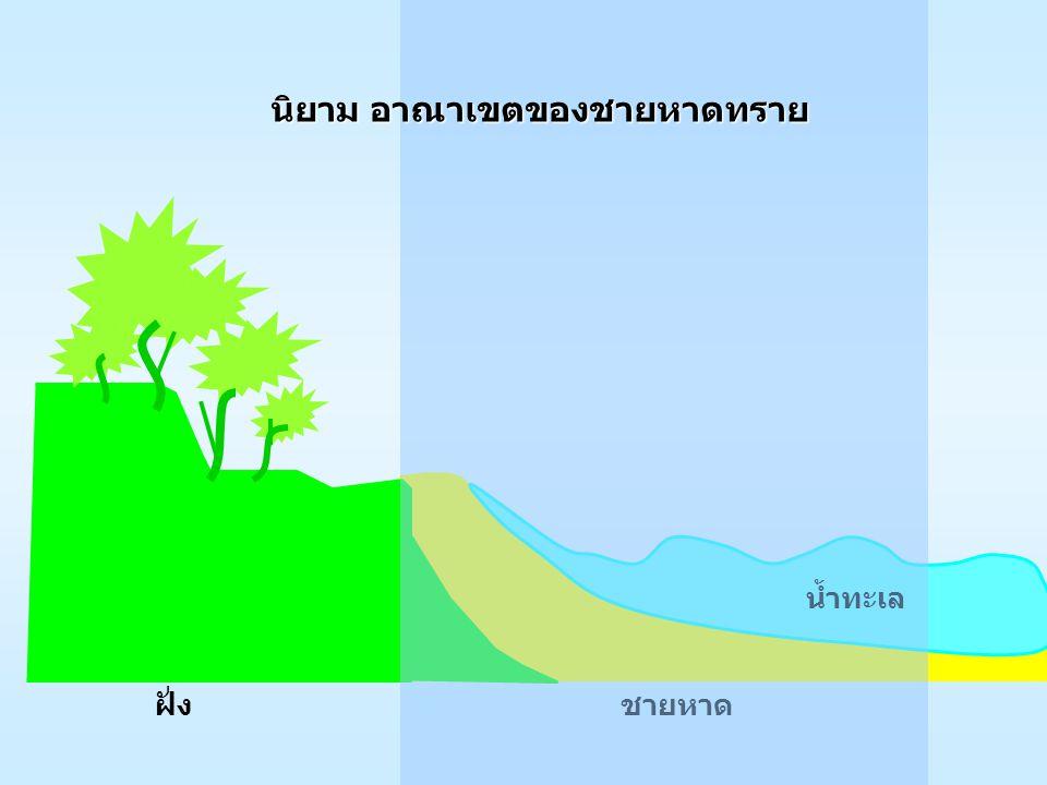 กรณีตัวอย่าง : หาดสะกอม