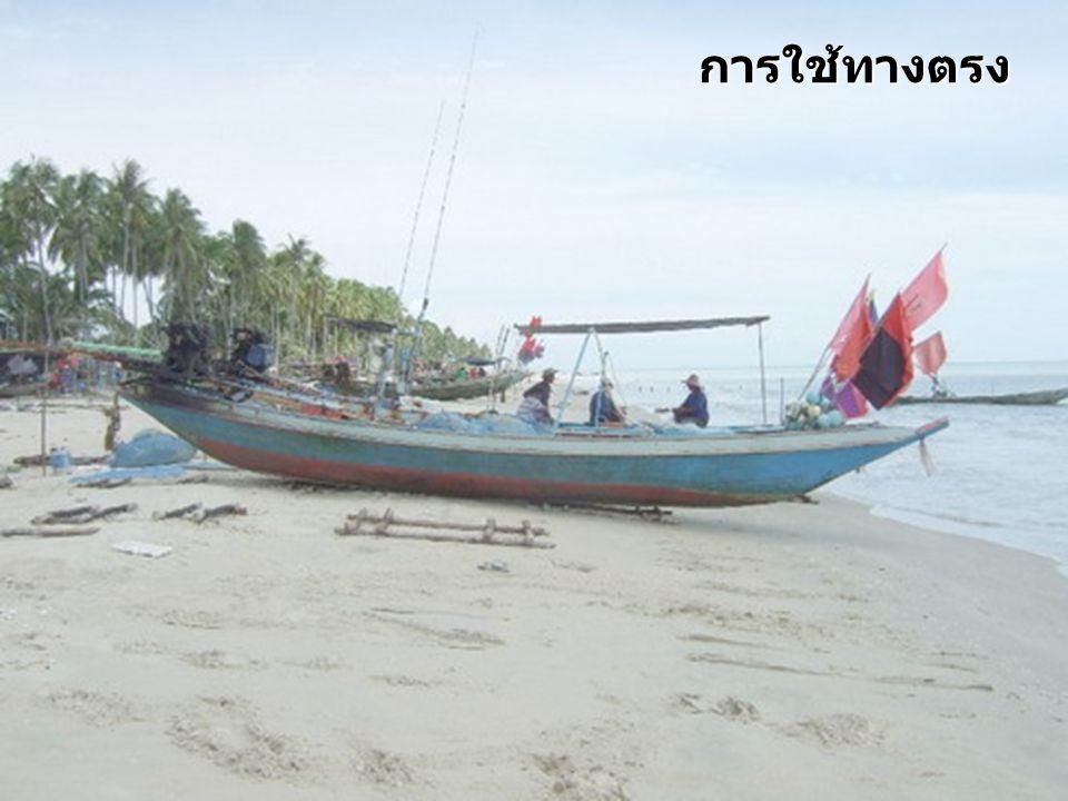 กรณีตัวอย่าง : หาดสะกอม ผลกระทบต่อชุมชน 1)การสูญเสียที่จอดเรือ 2) การสูญเสียที่การสูญเสียเส้นทางสัญจร 3)การสูญเสียพื้นที่พักผ่อนหย่อนใจของชุมชน 4)การสูญเสียที่ดิน 5)การสูญเสียพื้นที่จับสัตว์น้ำเพื่อเลี้ยงชีพ 6) ผลกระทบต่อความรู้สึกที่ดีของชาวบ้านต่อการ สูญเสียหาดสะกอม