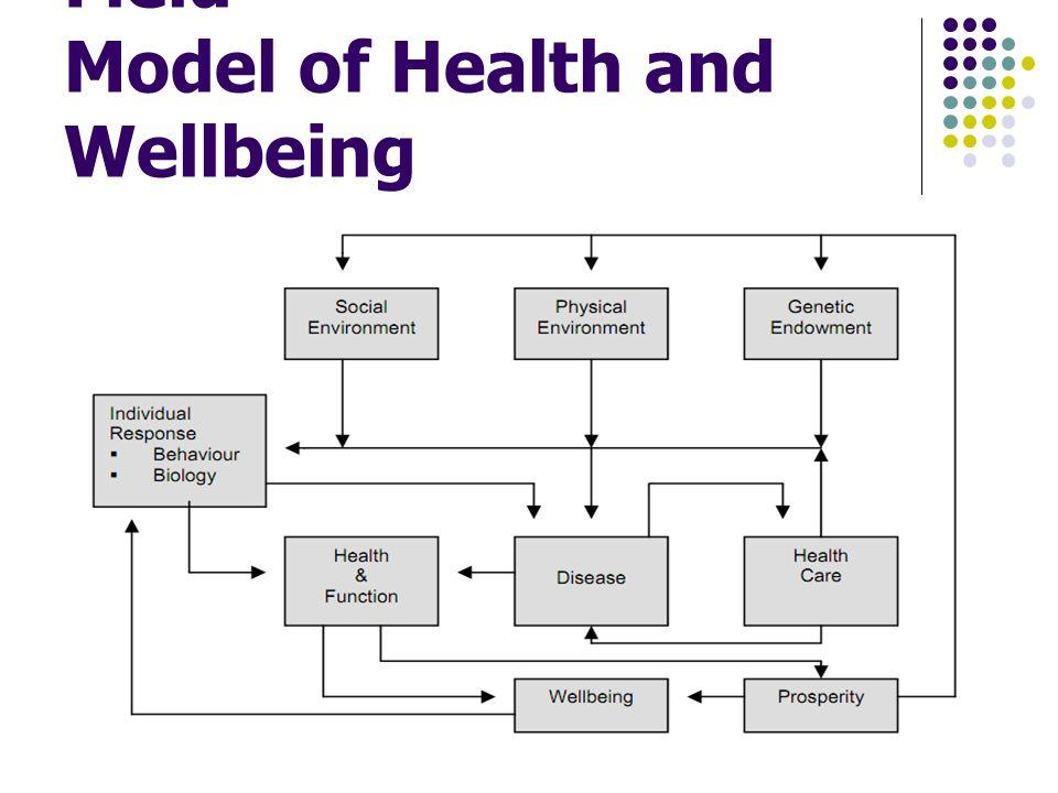 ความสัมพันธ์ระหว่างสุขภาพและ ปัจจัยกำหนดสุขภาพที่เชื่อมโยง อย่างเป็นองค์รวม – นพ. สุร เกียรติ
