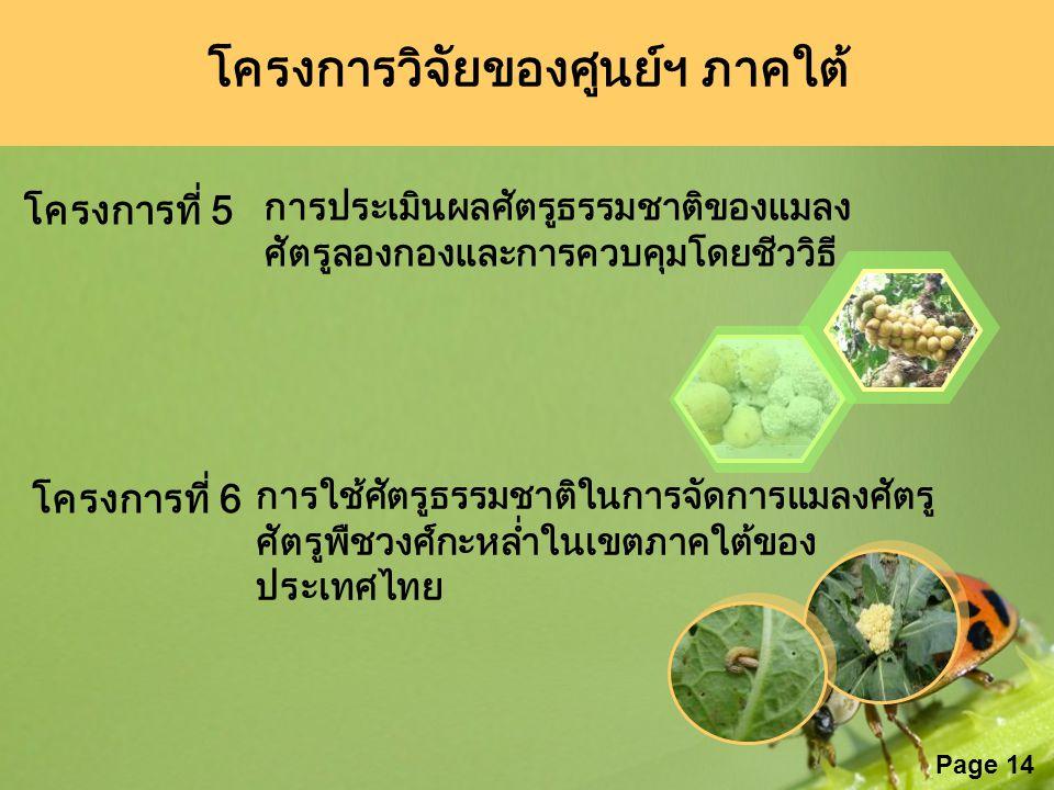 Page 14 โครงการที่ 5 การประเมินผลศัตรูธรรมชาติของแมลง ศัตรูลองกองและการควบคุมโดยชีววิธี โครงการที่ 6 การใช้ศัตรูธรรมชาติในการจัดการแมลงศัตรู ศัตรูพืชว