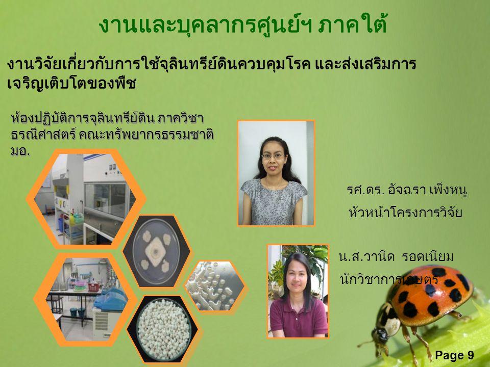 Page 9 งานและบุคลากรศูนย์ฯ ภาคใต้ งานวิจัยเกี่ยวกับการใช้จุลินทรีย์ดินควบคุมโรค และส่งเสริมการ เจริญเติบโตของพืช รศ.ดร. อัจฉรา เพ็งหนู หัวหน้าโครงการว