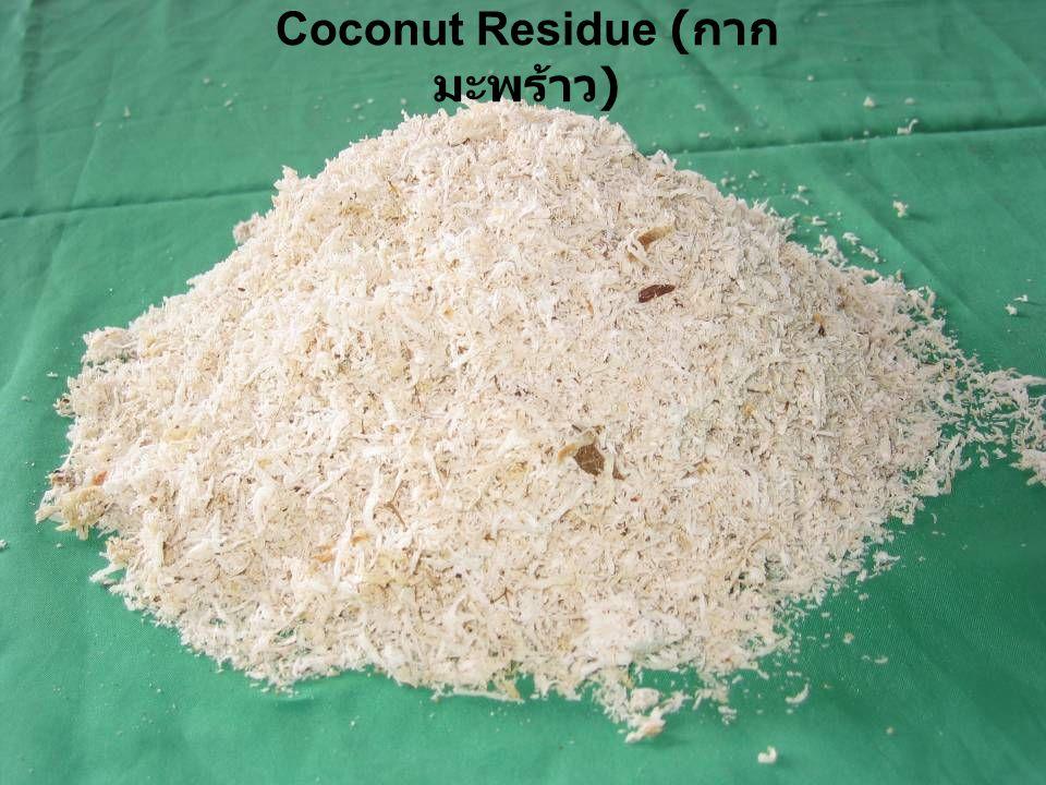 Coconut Residue ( กาก มะพร้าว )