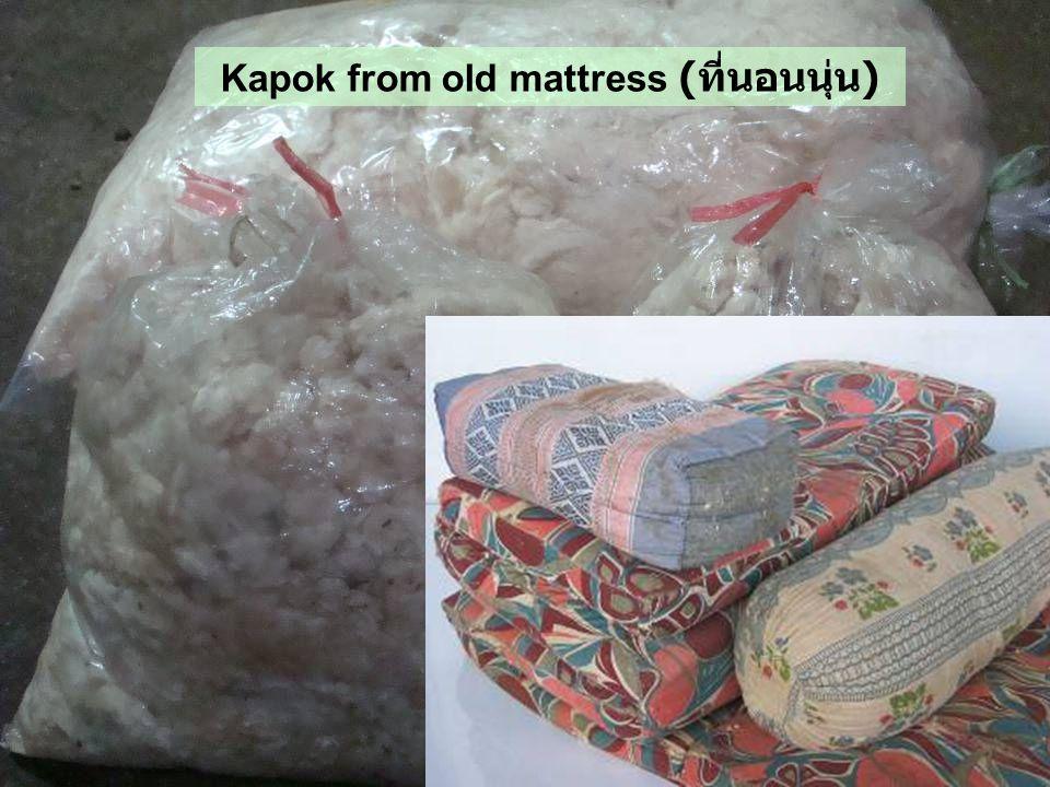 Kapok from old mattress ( ที่นอนนุ่น )