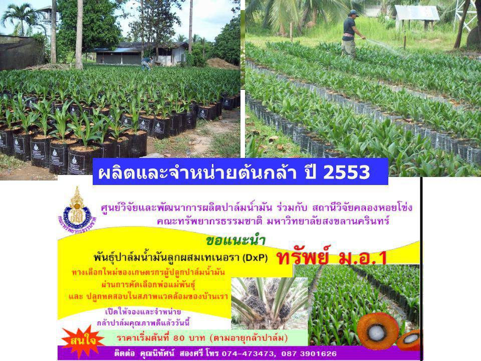 ผลิตและจำหน่ายต้นกล้า ปี 2553 ประมาณ 30,000 ต้น