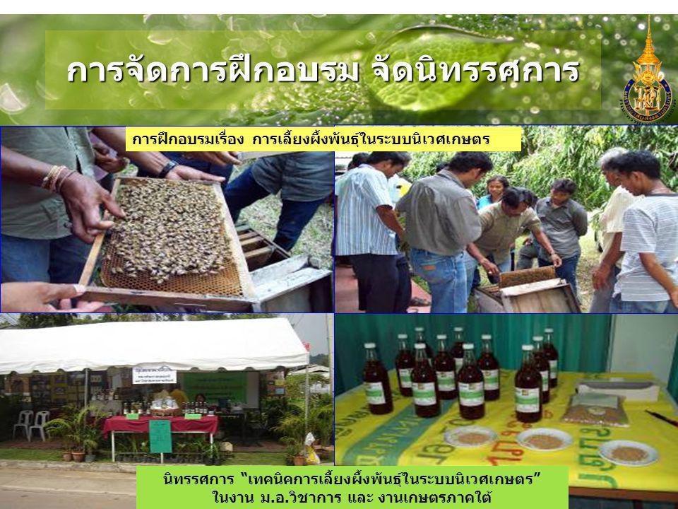 """การจัดการฝึกอบรม จัดนิทรรศการ การฝึกอบรมเรื่อง การเลี้ยงผึ้งพันธุ์ในระบบนิเวศเกษตร นิทรรศการ """"เทคนิคการเลี้ยงผึ้งพันธุ์ในระบบนิเวศเกษตร"""" ในงาน ม. อ. ว"""