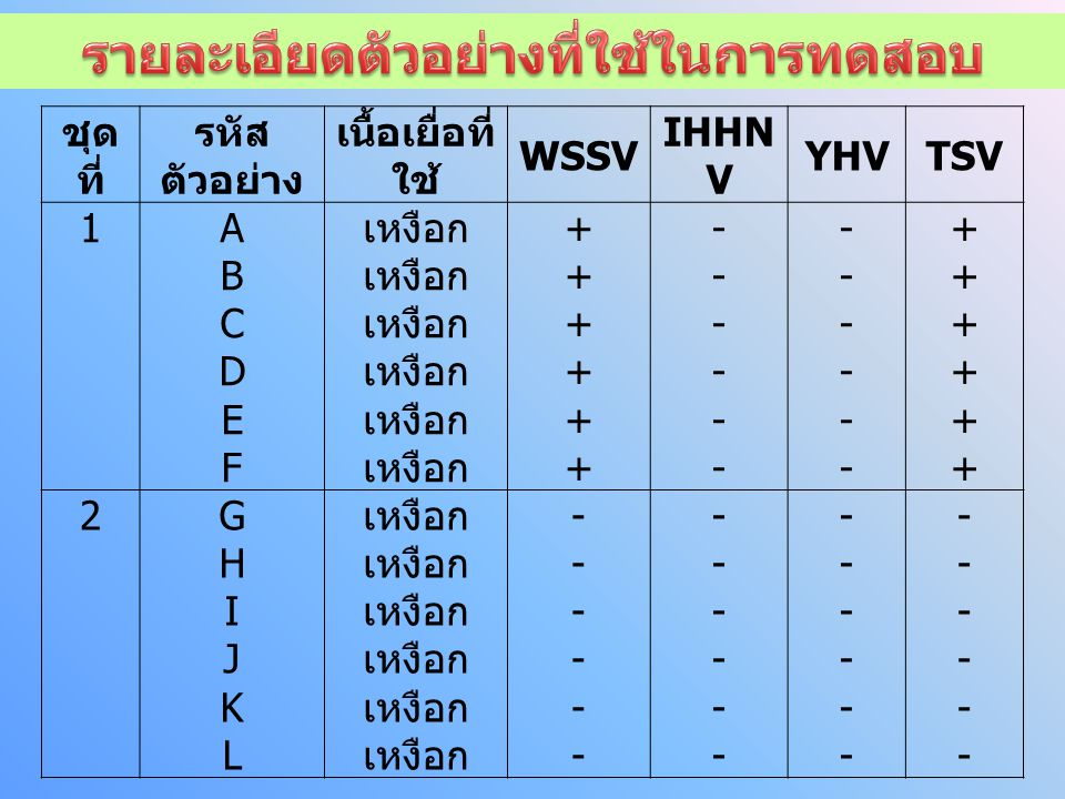 ชุด ที่ รหัส ตัวอย่าง เนื้อเยื่อที่ ใช้ WSSV IHHN V YHVTSV 1ABCDEFABCDEF เหงือก ++++++++++++ ------------ ------------ ++++++++++++ 2GHIJKLGHIJKL ------------ ------------ ------------ ------------