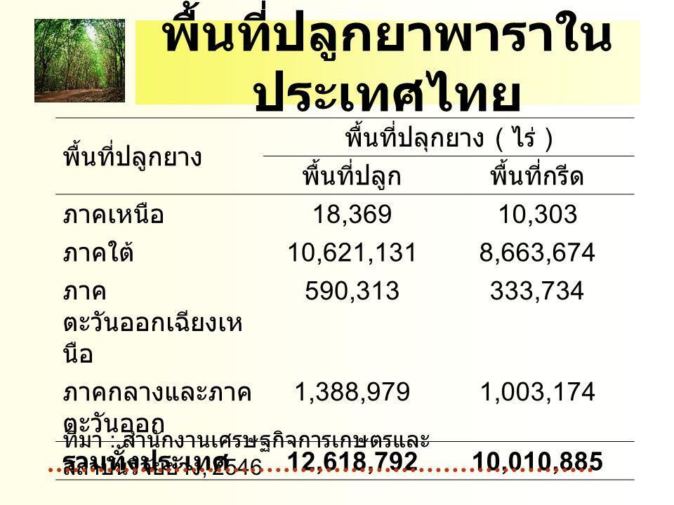 พื้นที่ปลูกยาพาราใน ประเทศไทย พื้นที่ปลูกยาง พื้นที่ปลุกยาง ( ไร่ ) พื้นที่ปลูกพื้นที่กรีด ภาคเหนือ 18,36910,303 ภาคใต้ 10,621,1318,663,674 ภาค ตะวันออกเฉียงเห นือ 590,313333,734 ภาคกลางและภาค ตะวันออก 1,388,9791,003,174 รวมทั้งประเทศ 12,618,79210,010,885 ที่มา : สำนักงานเศรษฐกิจการเกษตรและ สถาบันวิจัยยาง, 2546