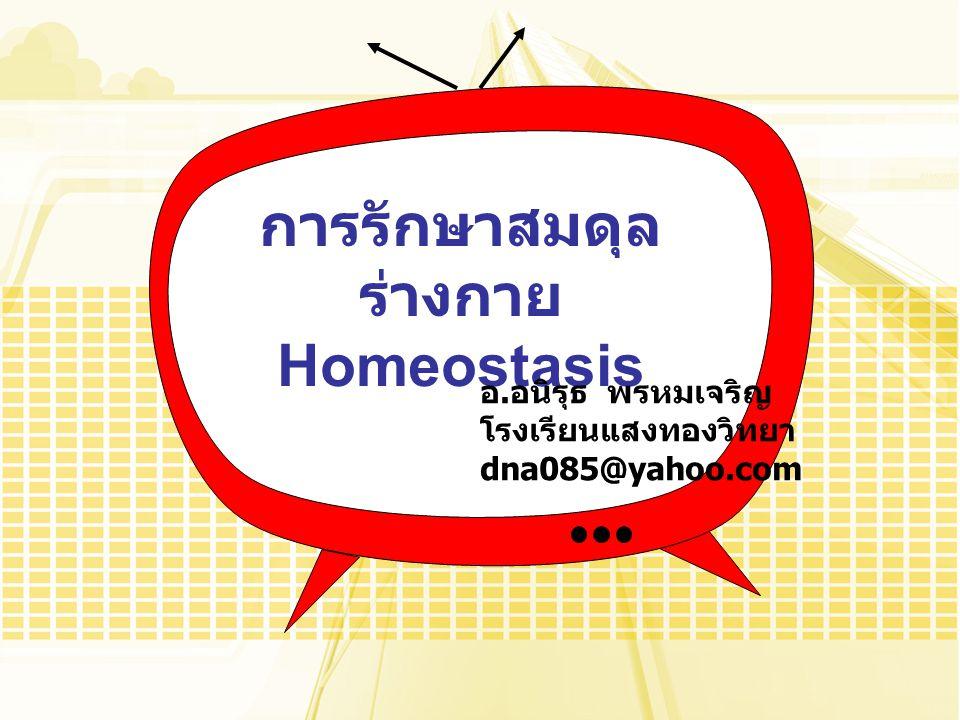 การรักษาสมดุล ร่างกาย Homeostasis อ. อนิรุธ พรหมเจริญ โรงเรียนแสงทองวิทยา dna085@yahoo.com