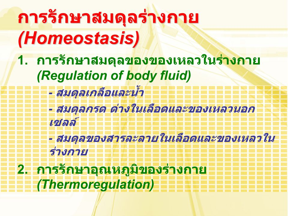1. การรักษาสมดุลของของเหลวในร่างกาย (Regulation of body fluid) - สมดุลเกลือและน้ำ - สมดุลกรด ด่างในเลือดและของเหลวนอก เซลล์ - สมดุลของสารละลายในเลือดแ