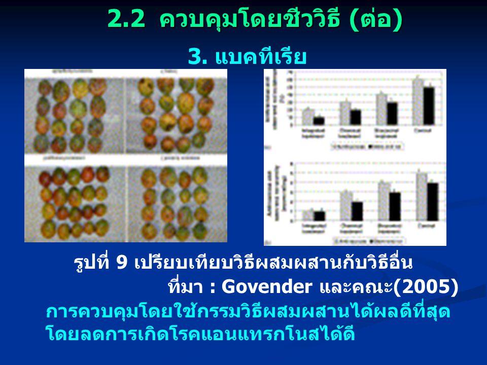 3. แบคทีเรีย ที่มา : Govender และคณะ (2005) การควบคุมโดยใช้กรรมวิธีผสมผสานได้ผลดีที่สุด โดยลดการเกิดโรคแอนแทรกโนสได้ดี รูปที่ 9 เปรียบเทียบวิธีผสมผสาน