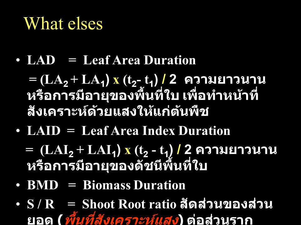 What elses LAD = Leaf Area Duration = (LA 2 + LA 1 ) x (t 2 - t 1 ) / 2 ความยาวนาน หรือการมีอายุของพื้นที่ใบ เพื่อทำหน้าที่ สังเคราะห์ด้วยแสงให้แก่ต้น