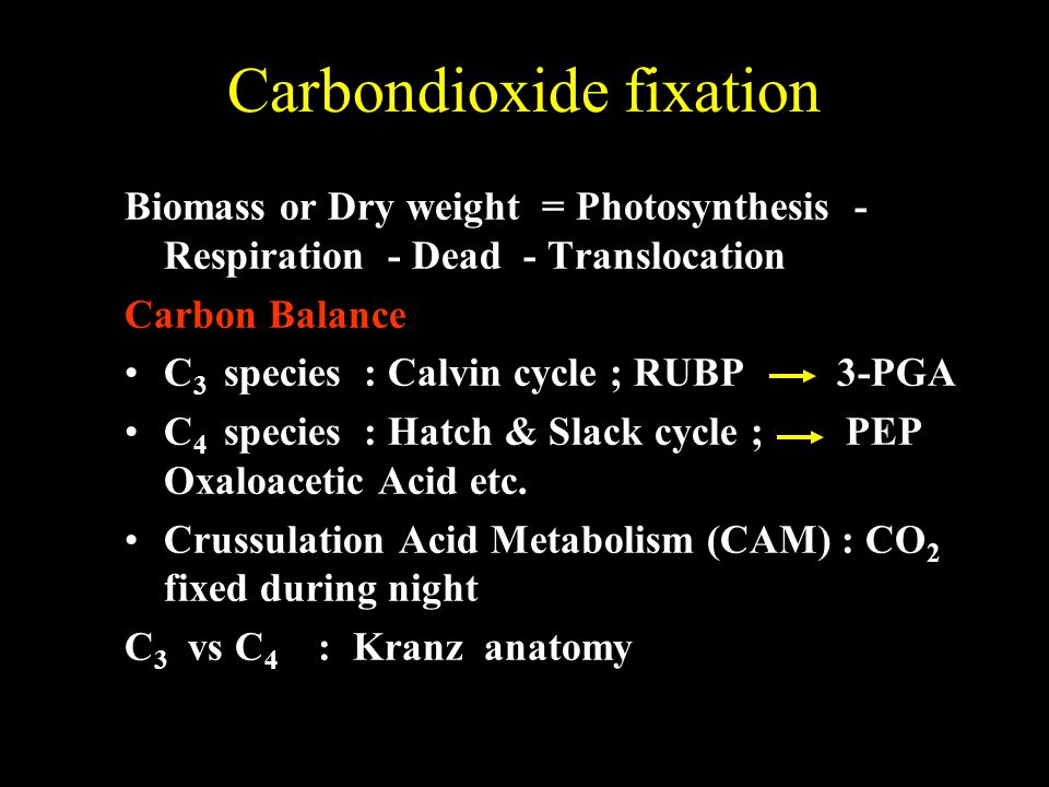 Carbondioxide fixation Biomass or Dry weight = Photosynthesis - Respiration - Dead - Translocation Carbon Balance C 3 species : Calvin cycle ; RUBP 3-PGA C 4 species : Hatch & Slack cycle ; PEP Oxaloacetic Acid etc.