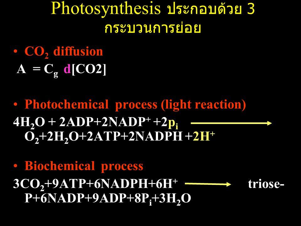 Photosynthesis ประกอบด้วย 3 กระบวนการย่อย CO 2 diffusion A = C g d[CO2] Photochemical process (light reaction) 4H 2 O + 2ADP+2NADP + +2p i O 2 +2H 2 O