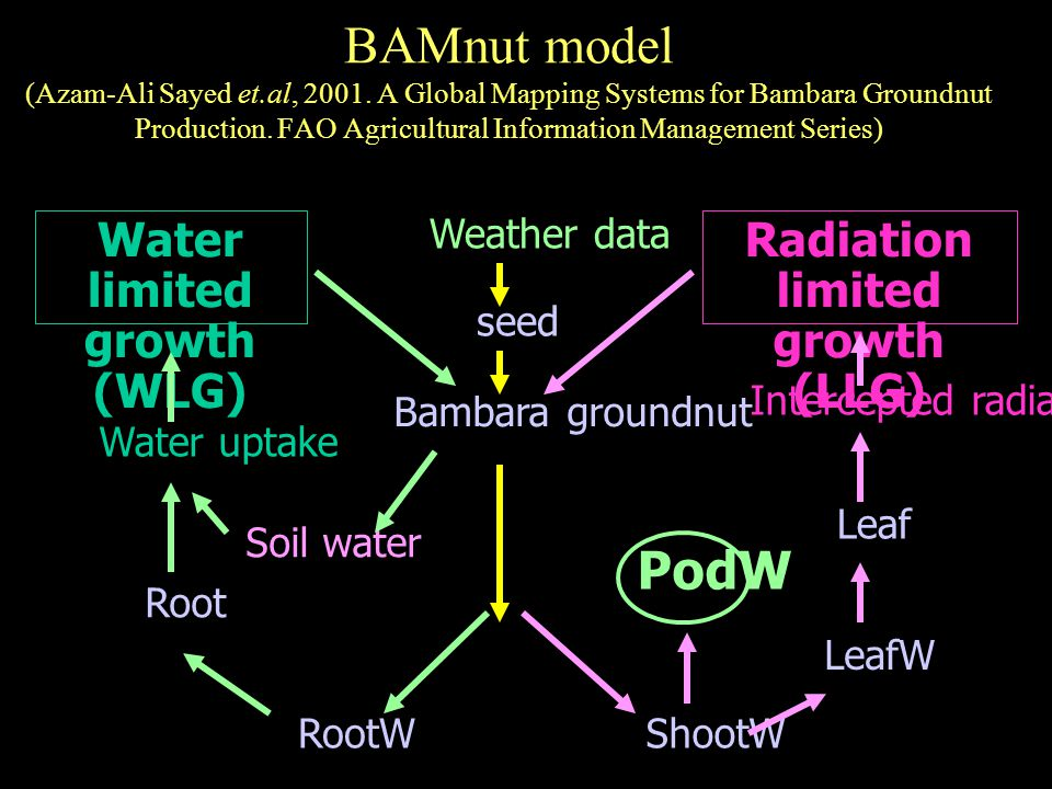 BAMnut model (Azam-Ali Sayed et.al, 2001. A Global Mapping Systems for Bambara Groundnut Production. FAO Agricultural Information Management Series) W