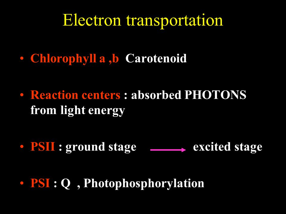 Electron transportation Chlorophyll a,b Carotenoid Reaction centers : absorbed PHOTONS from light energy PSII : ground stage excited stage PSI : Q, Photophosphorylation