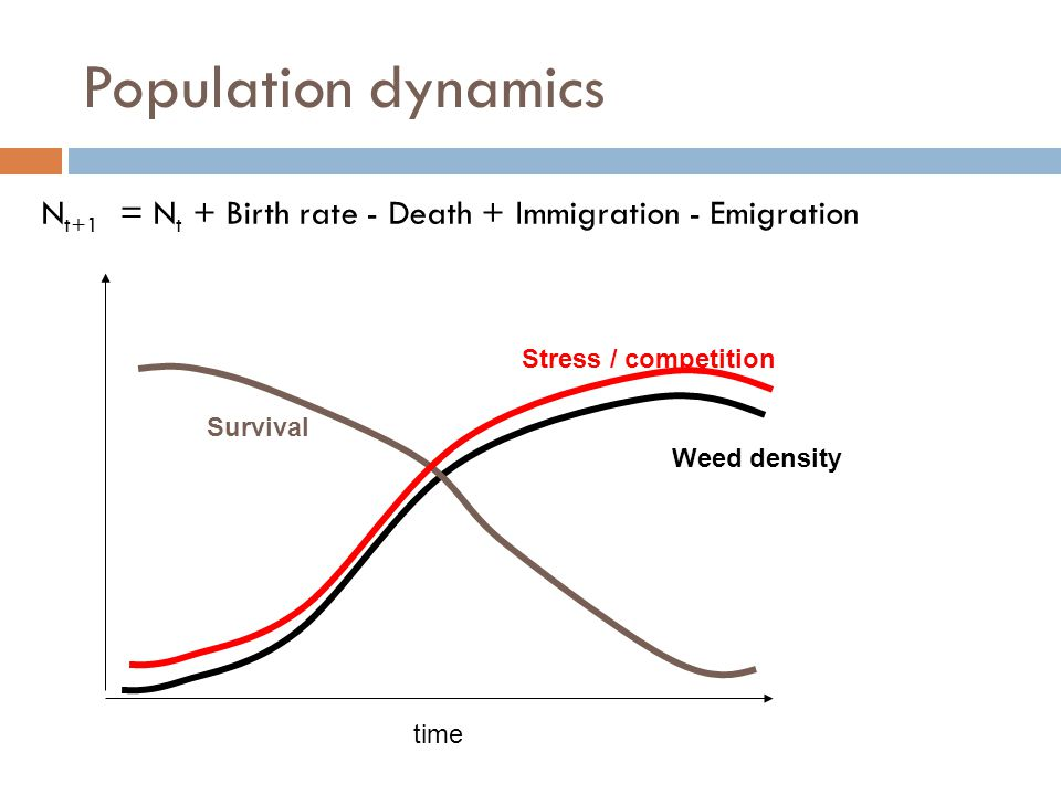 Population dynamics N t+1 = N t + Birth rate - Death + Immigration - Emigration time Weed density Stress / competition Survival