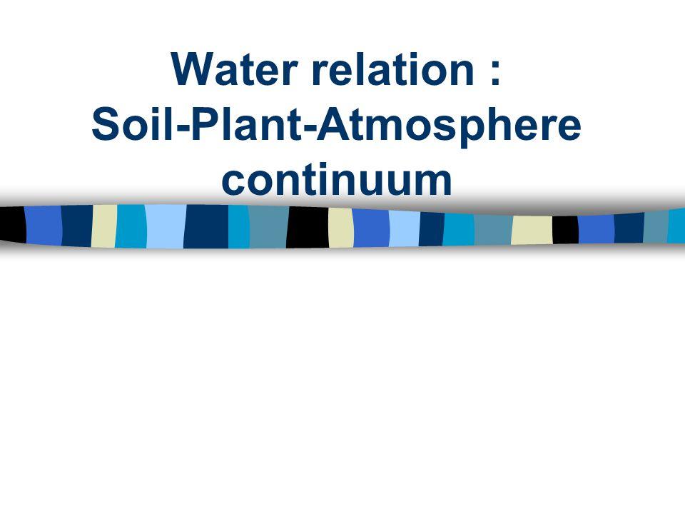 ความสัมพันธ์ของน้ำใน ดิน - พืช - บรรยากาศ Soil water Atmospheric water Water in Plant Transpiration : stomata opening, RH หรื อ VPD ของบรรยากาศ Absorption : root penitration, moisture tension ของดิน TRANSLOCATION