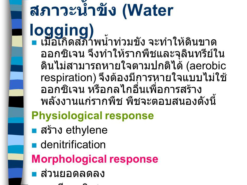 สภาวะน้ำขัง (Water logging) เมื่อเกิดสภาพน้ำท่วมขัง จะทำให้ดินขาด ออกซิเจน จึงทำให้รากพืชและจุลินทรีย์ใน ดินไม่สามารถหายใจตามปกติได้ (aerobic respirat