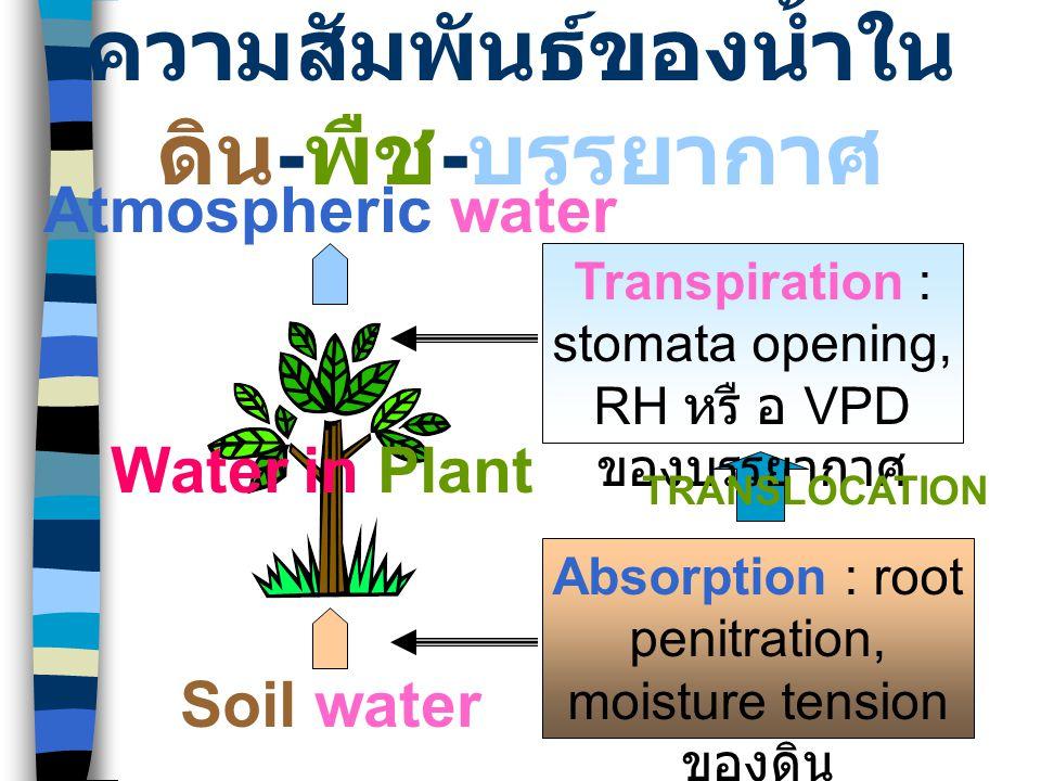 Soil water น้ำในดิน นิยมอธิบายด้วยแรงดึงหรือแรงดันของโมเลกุล น้ำกับอนุภาคดิน ในรูปของระดับพลังงาน ที่ เรียกว่าศักย์ของน้ำเป็นเกณฑ์ในการวัด (moisture tension / water potential : ) น้ำในดินที่เกี่ยวข้องกับการดูดซับได้ของรากพืช แบ่งออกเป็น 4 กลุ่มคือ –free water / gravitational water : โมเลกุลของน้ำ ถูกดูดยึดน้อยกว่าแรงดึงดูดของโลก ในดินเหนียวมี ค่ามากกว่า -0.03 MPa ในดินทรายมีค่าระหว่าง - (0.01-0.02) MPa น้ำส่วนนี้จะไหลออกไปจากชั้น ดินอย่างอิสระ –available water : โมเลกุลน้ำที่ถูกดูดยึดไว้ด้วยแรง ระหว่าง -0.03 ถึง - 0.15 MPa เป็นน้ำที่ถูกกักเก็บ ในชั้นดินและพืชสามารถดูดไปใช้ได้ –field capacity : คือระดับพลังงานสูงสุดที่รากพืช สามารถดึงเอาโมเลกุลน้ำออกจากชั้นดินได้ มีค่า เท่ากับ 0.03MPa –permanent wilting point : โมเลกุลของน้ำถูกดูด ยึดด้วยแรงมากกว่า - 0.15 MPa ซึ่งรากพืชไม่ สามารถดึงเอาน้ำส่วนนี้มาใช้ได้ พืชจะแสดงอาการ เหี่ยวเฉา