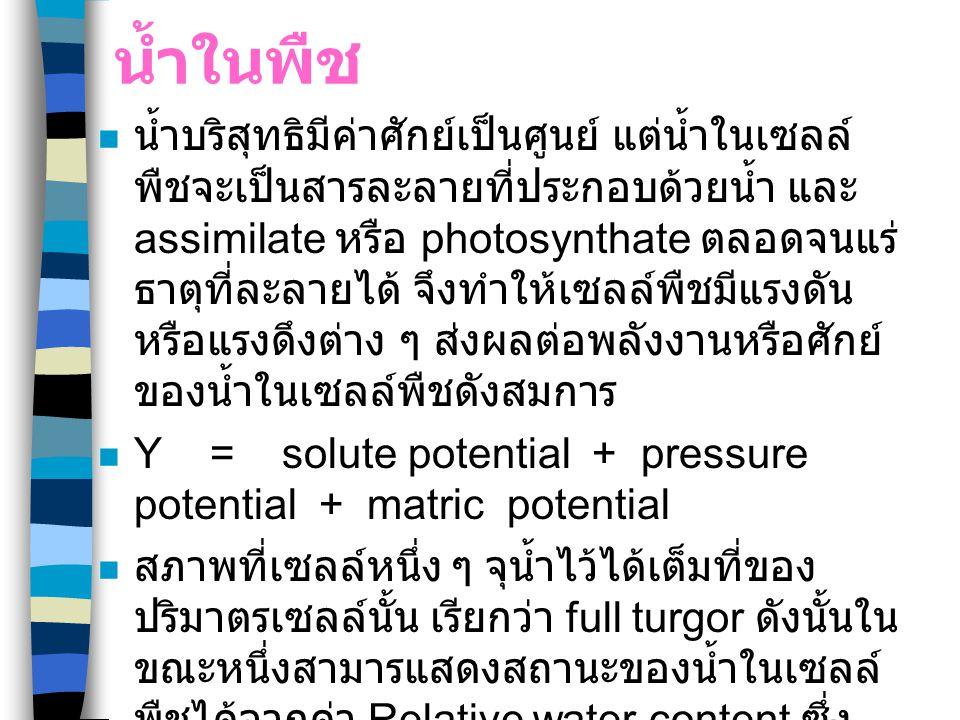 การวัดศักย์ของน้ำในพืช ใช้เครื่อง Pressure chamber เพื่อวัด แรงดันหรือ Water potential ของเนื้อเยื่อนั้น ๆ ใช้เครื่อง vapur pressure osmometer หรือ potentia meter เพื่อวัดแรงดันของ สารละลายในเซลล์พืช เรียกว่า osmotic potential ส่วน turgor pressure สามารถวัดด้วยเครื่อง pressure probe หรือคำนวนจากสมการ turgor pressure = water potential - osmotic potential