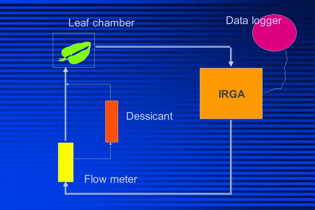 [CO 2 ] ใน leaf chamber เพิ่ม = ใบพืชมีการ หายใจ เพิ่ม = ใบพืชมีการ หายใจ ลด = ใบพืชมีการ สังเคราะห์ด้วยแสง ลด = ใบพืชมีการ สังเคราะห์ด้วยแสง