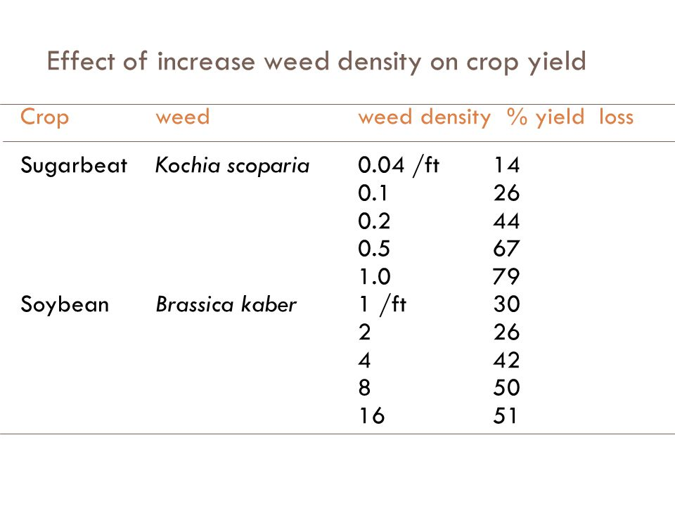 Effect of increase weed density on crop yield Cropweedweed density % yield loss SoybeanXanthium sp1335 /Acer10 267128 526143 10,52252 Rice Echinochloa crusgalli1 /ft 2 57 580 2595 CornSetaria faberii0.5 /ft4 17 39 612 1216 5424