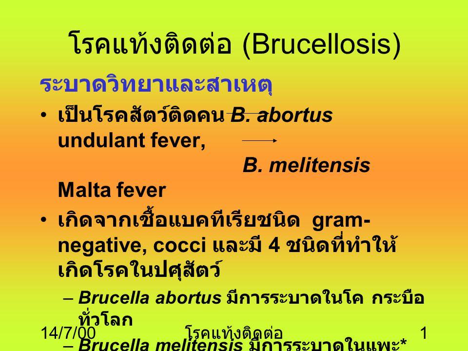 14/7/00 โรคแท้งติดต่อ 1 โรคแท้งติดต่อ (Brucellosis) ระบาดวิทยาและสาเหต ุ เป็นโรคสัตว์ติดคน B.