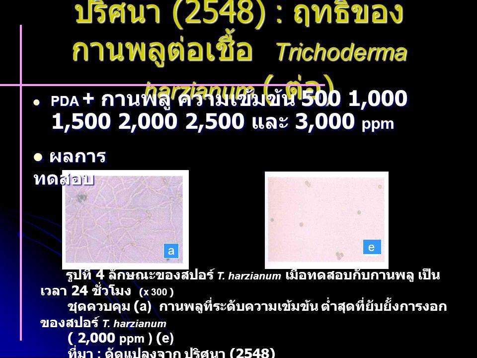 ปริศนา (2548) : ฤทธิ์ของ กานพลูต่อเชื้อ Trichoderma harzianum ( ต่อ ) PDA + กานพลู ความเข้มข้น 500 1,000 1,500 2,000 2,500 และ 3,000 ppm PDA + กานพลู ความเข้มข้น 500 1,000 1,500 2,000 2,500 และ 3,000 ppm รูปที่ 4 ลักษณะของสปอร์ T.