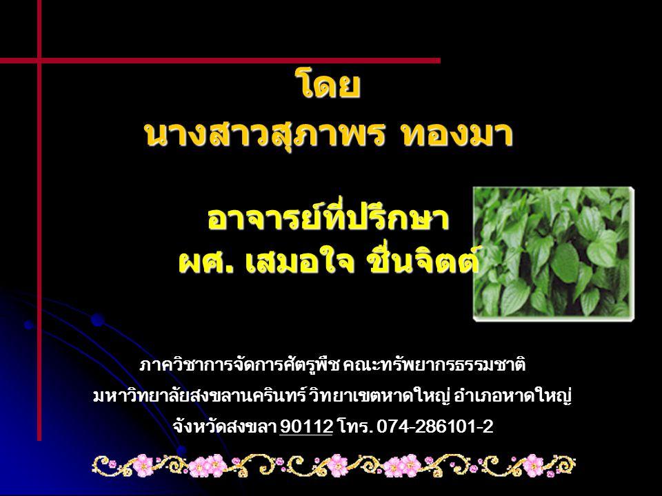 โดย นางสาวสุภาพร ทองมา อาจารย์ที่ปรึกษา ผศ. เสมอใจ ชื่นจิตต์ ภาควิชาการจัดการศัตรูพืช คณะทรัพยากรธรรมชาติ มหาวิทยาลัยสงขลานครินทร์ วิทยาเขตหาดใหญ่ อำเ