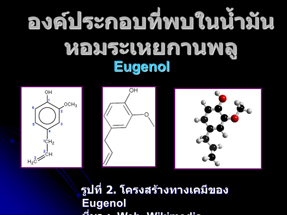 องค์ประกอบที่พบในน้ำมัน หอมระเหยกานพลู Eugenol รูปที่ 2. โครงสร้างทางเคมีของ Eugenol ที่มา : Web Wikimedia รูปที่ 2. โครงสร้างทางเคมีของ Eugenol ที่มา