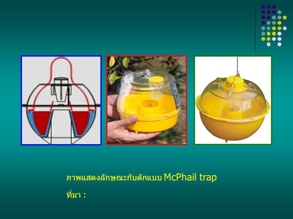 ภาพแสดงลักษณะกับดักแบบ McPhail trap ที่มา :