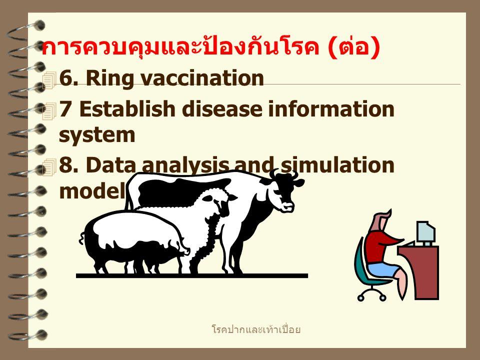 โรคปากและเท้าเปื่อย การควบคุมและป้องกันโรค ( ต่อ )  4. Whole sale slaughter and full compensation ไม่เกิดการลักลอบนำสัตว์ไปขายที่อื่น  5. ใช้น้ำยาฆ่
