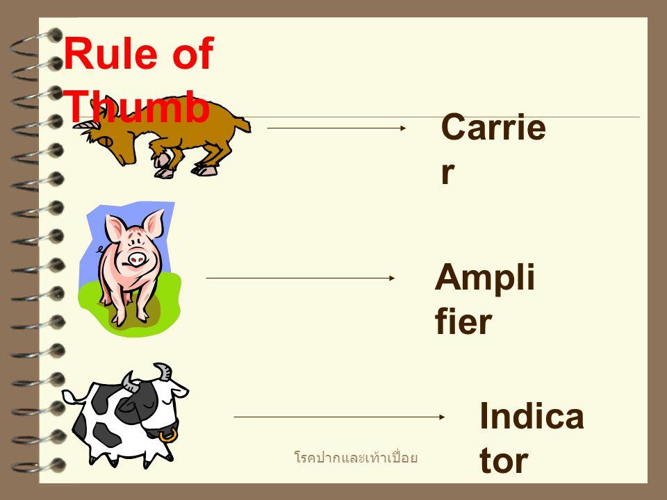 โรคปากและเท้าเปื่อย Rule of Thumb Carrie r Ampli fier Indica tor