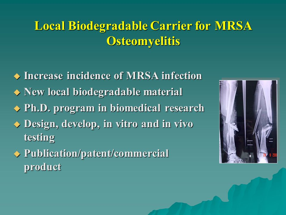 Local Biodegradable Carrier for MRSA Osteomyelitis  Increase incidence of MRSA infection  New local biodegradable material  Ph.D. program in biomed