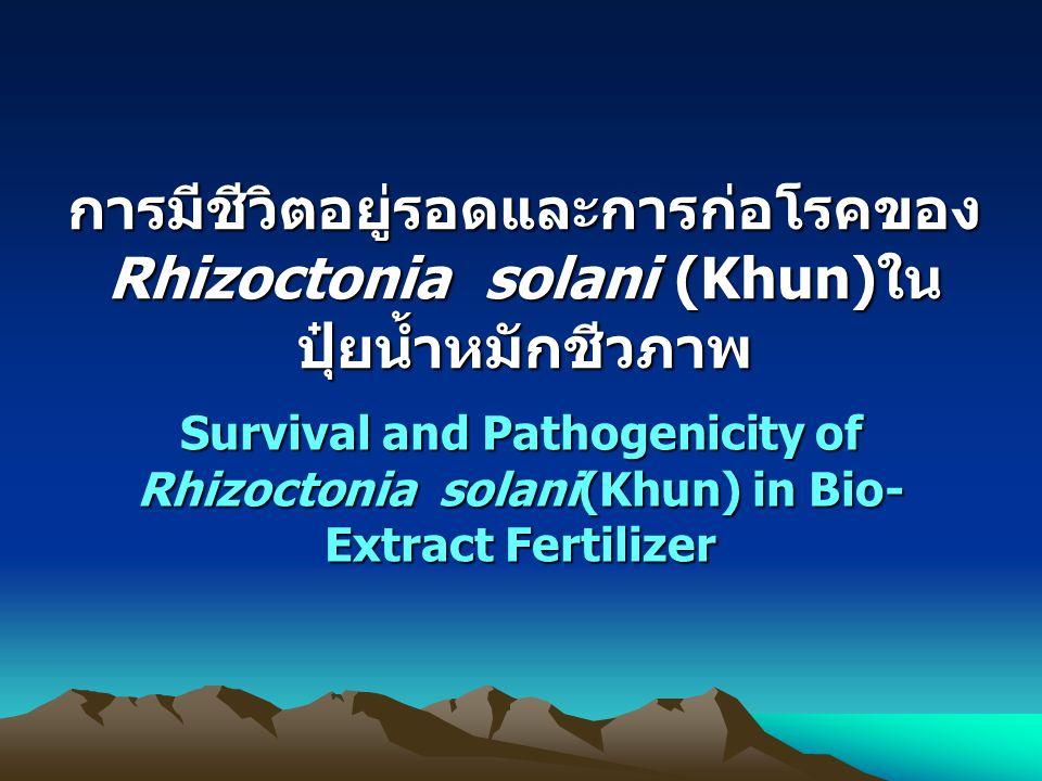 การมีชีวิตอยู่รอดและการก่อโรคของ Rhizoctonia solani (Khun)ใน ปุ๋ยน้ำหมักชีวภาพ Survival and Pathogenicity of Rhizoctonia solani(Khun) in Bio- Extract Fertilizer