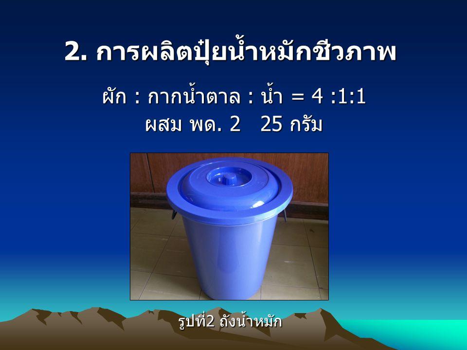 2.การผลิตปุ๋ยน้ำหมักชีวภาพ ผัก : กากน้ำตาล : น้ำ = 4 :1:1 ผสม พด.