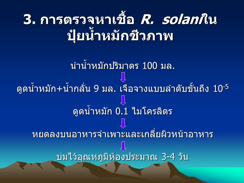 3.การตรวจหาเชื้อ R. solaniใน ปุ๋ยน้ำหมักชีวภาพ นำน้ำหมักปริมาตร 100 มล.