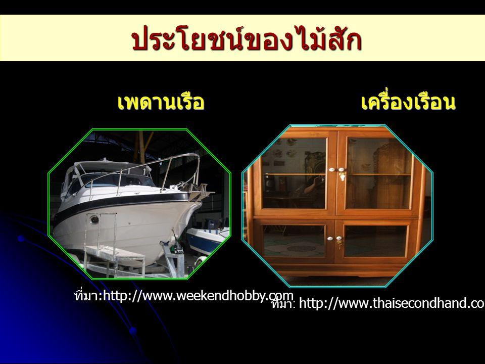 ประโยชน์ของไม้สัก เพดานเรือ เครื่องเรือน เพดานเรือ เครื่องเรือน ที่มา :http://www.weekendhobby.com ที่มา : http://www.thaisecondhand.com