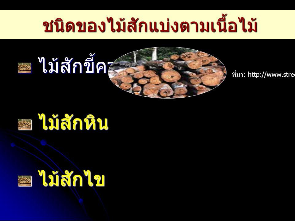 ไม้สักขี้ควาย ไม้สักขี้ควาย ไม้สักหิน ไม้สักหิน ไม้สักไข ไม้สักไข ที่มา : http://www.street-center.com ชนิดของไม้สักแบ่งตามเนื้อไม้