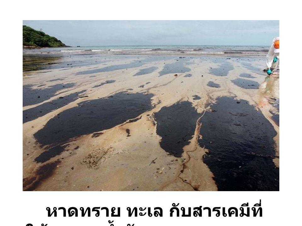 หาดทราย ทะเล กับสารเคมีที่ ใช้ควบคุมน้ำมัน