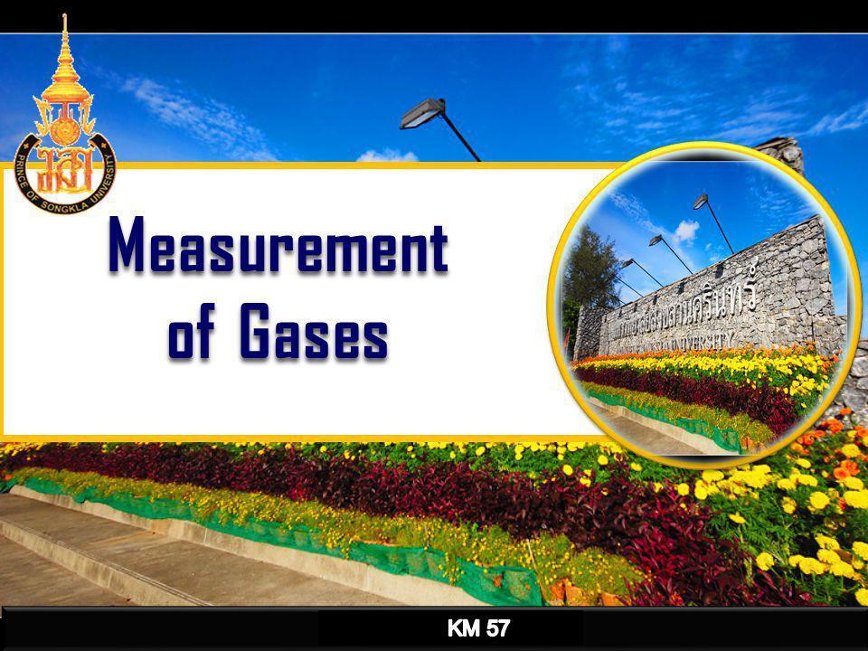 Direct Reading Instrument Ambient Air Analyzer Hand Pump เครื่องวัดปริมาณออกซิเจนและก๊าซ พิษ Detecter tube 2