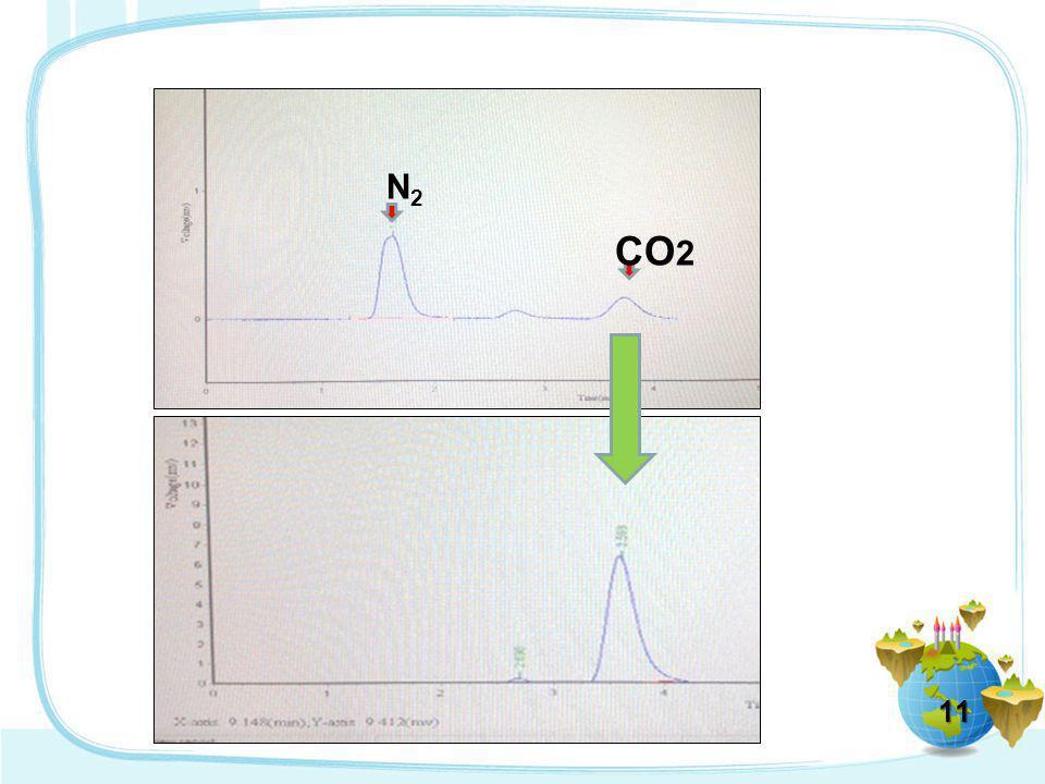 11 N2N2 CO 2